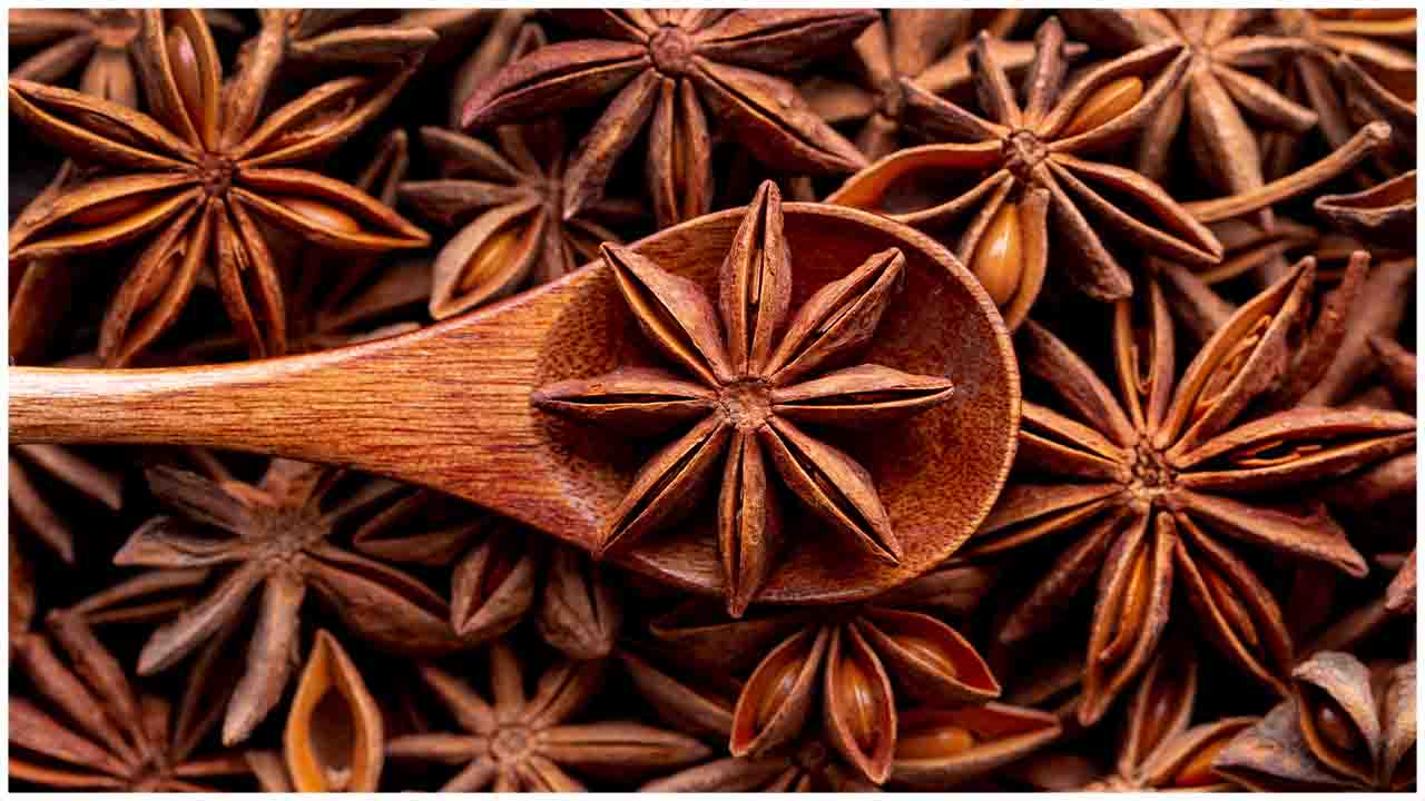 Star Anise is a Wonder Herb, Let's understand Know Why?