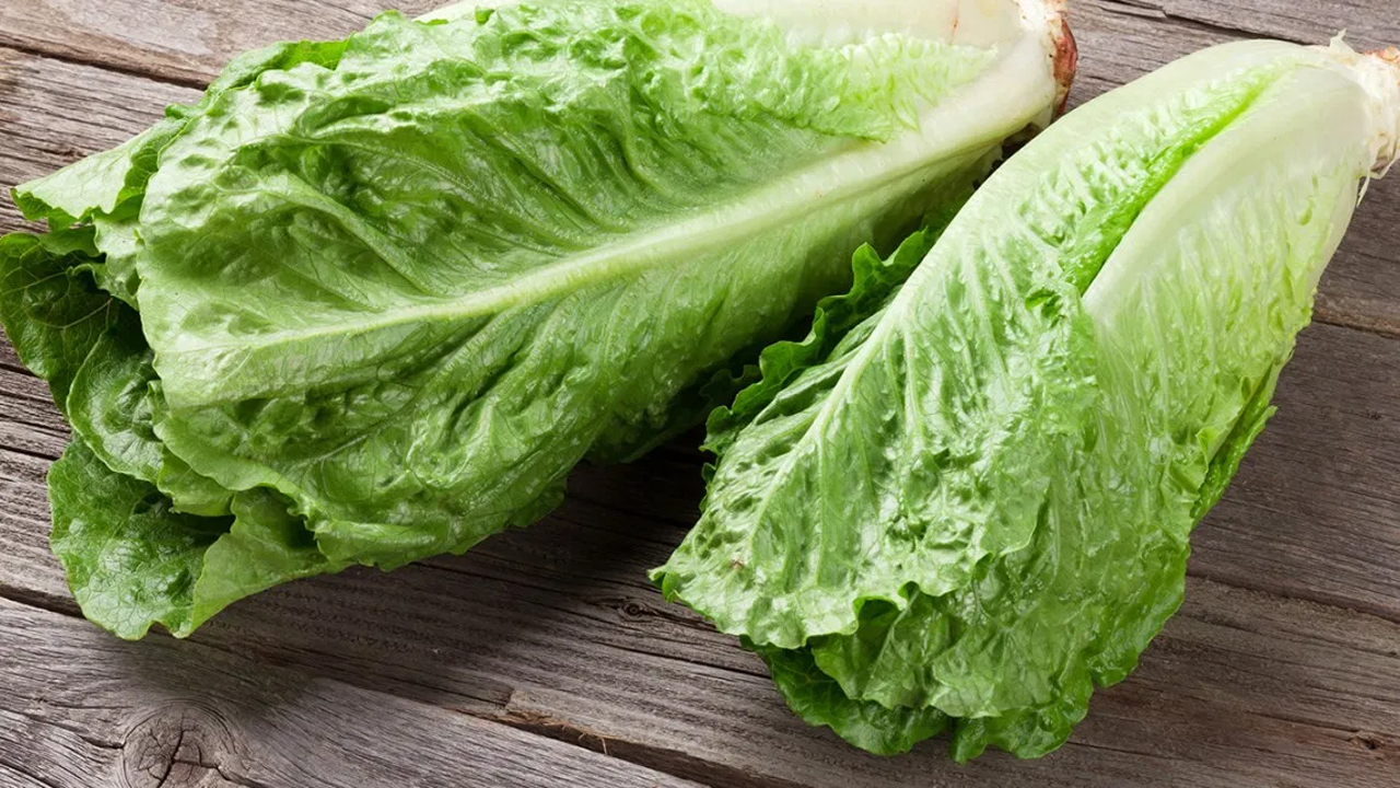 5 wonderful Benefits of Lettuce